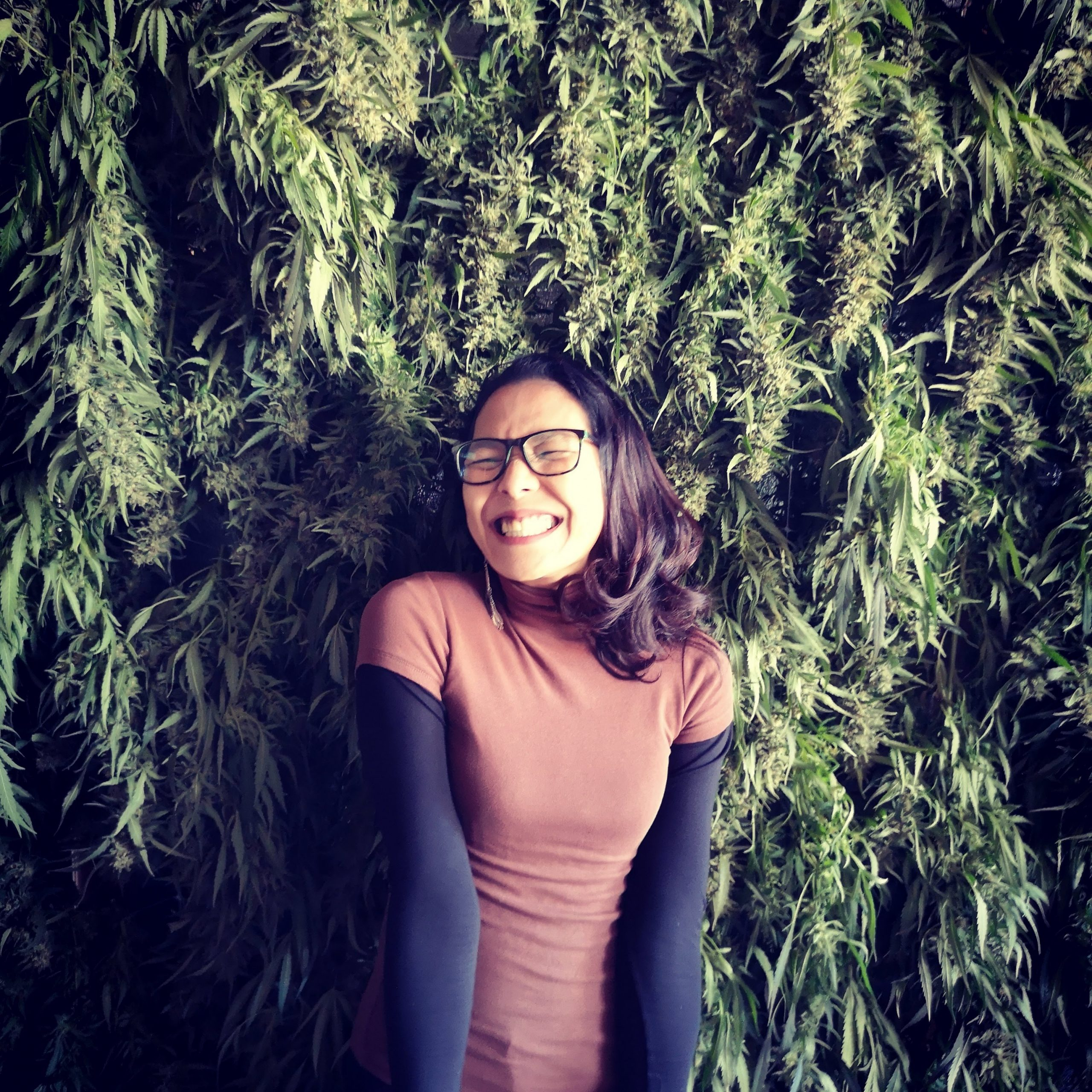 Asia Tech Podcast – Episode 50 – Chokwan Kitty Chopaka – Founder & CEO of Elevated Estate – Introducing a Cannabis Investment Fund